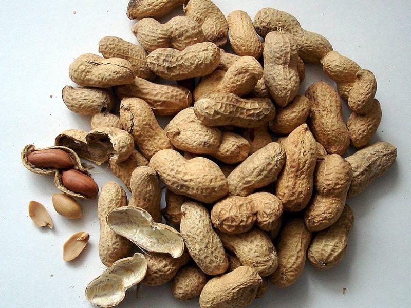 La transformation de l'arachide au Sénégal à l'épreuve de l'exportation