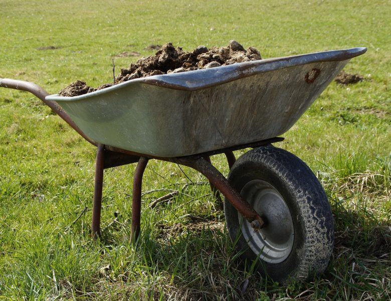 Pourquoi choisir les engrais organiques pour son jardin potager ?